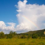 Rainbow without rain in the Rupununi Savannah.