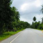 Road to Berbice.
