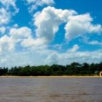 Shot taken in the Essequibo River.