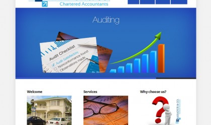 D. Bahadur & Co. Chartered Accountants