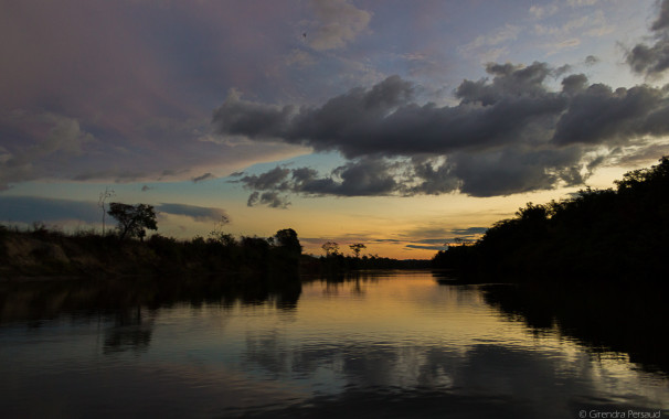 river,sunset, caimans, birds, trees, otter,water,fly,kingfisher,peace,calm, boats,adventure, adventurers